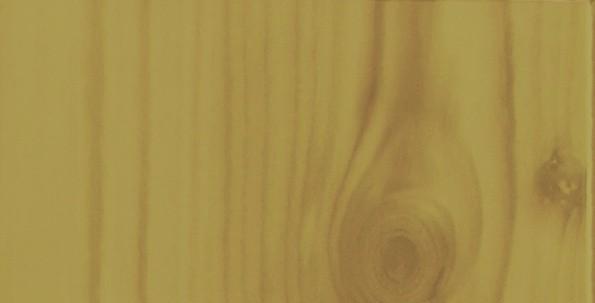 borovice-_L100